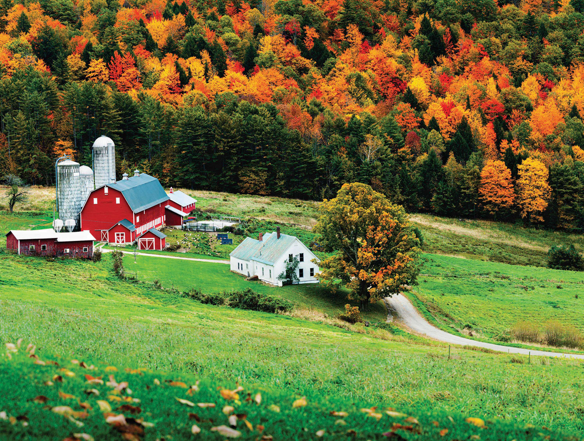 Friday Night Dance Countryside Jigsaw Puzzle