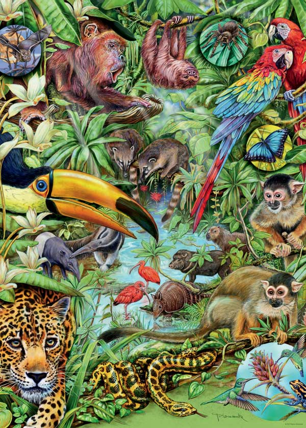 Rainforest Jigsaw Puzzle Puzzlewarehouse Com