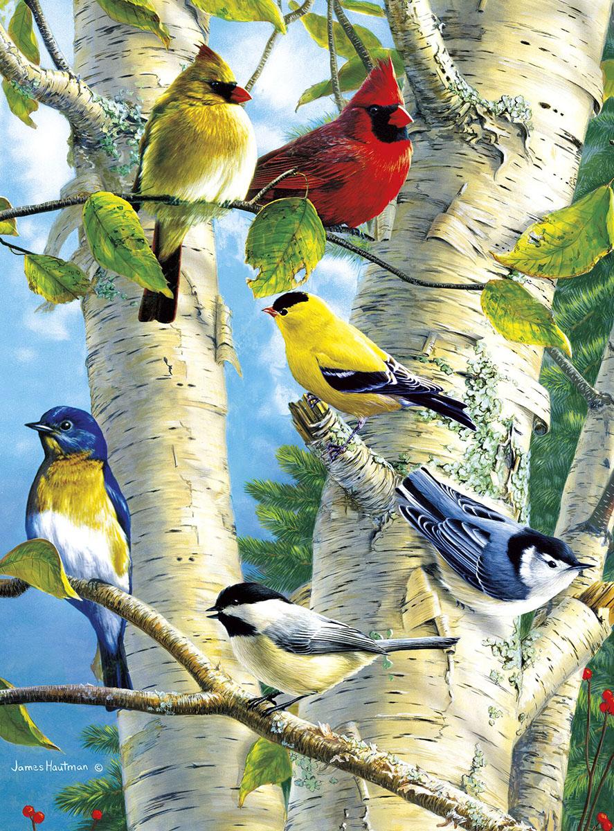 Songbird Favorites Birds Jigsaw Puzzle