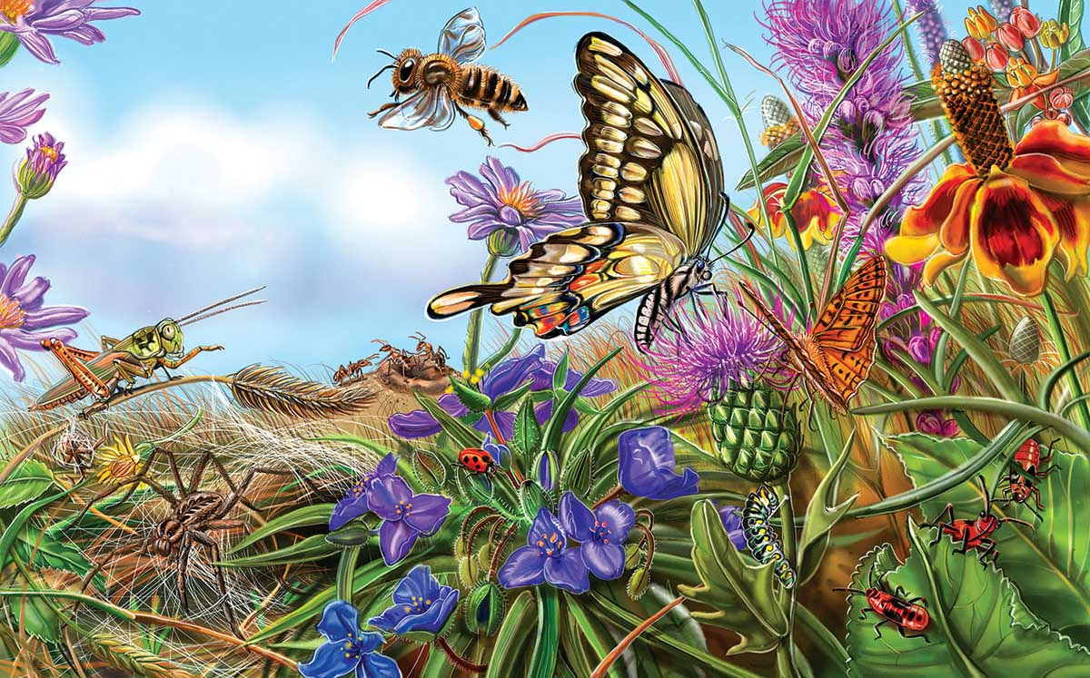 Prairie Spread Butterflies and Insects Jigsaw Puzzle