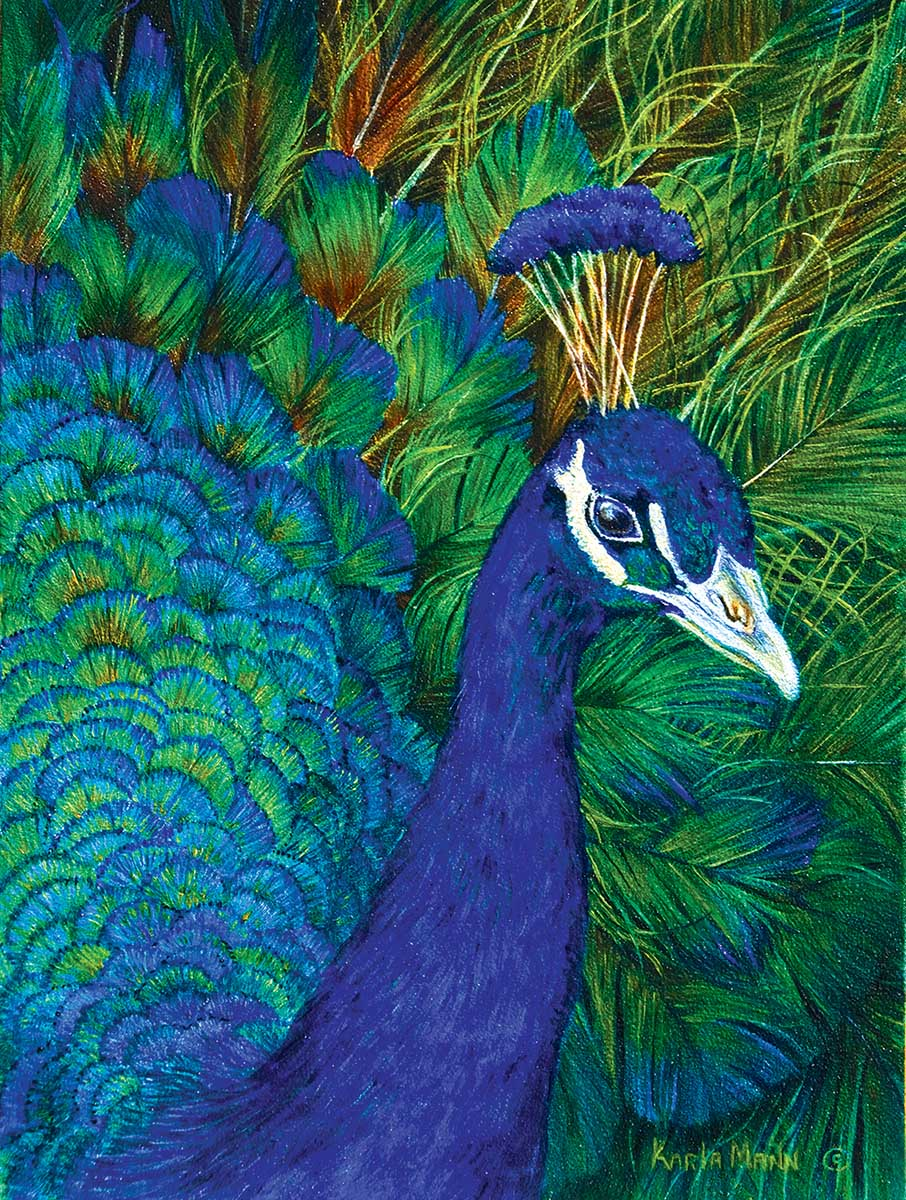 Peacock Birds Jigsaw Puzzle