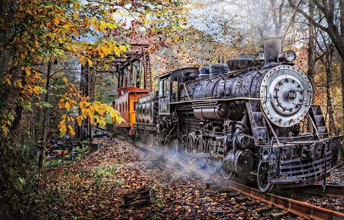 Train's Coming Travel Jigsaw Puzzle