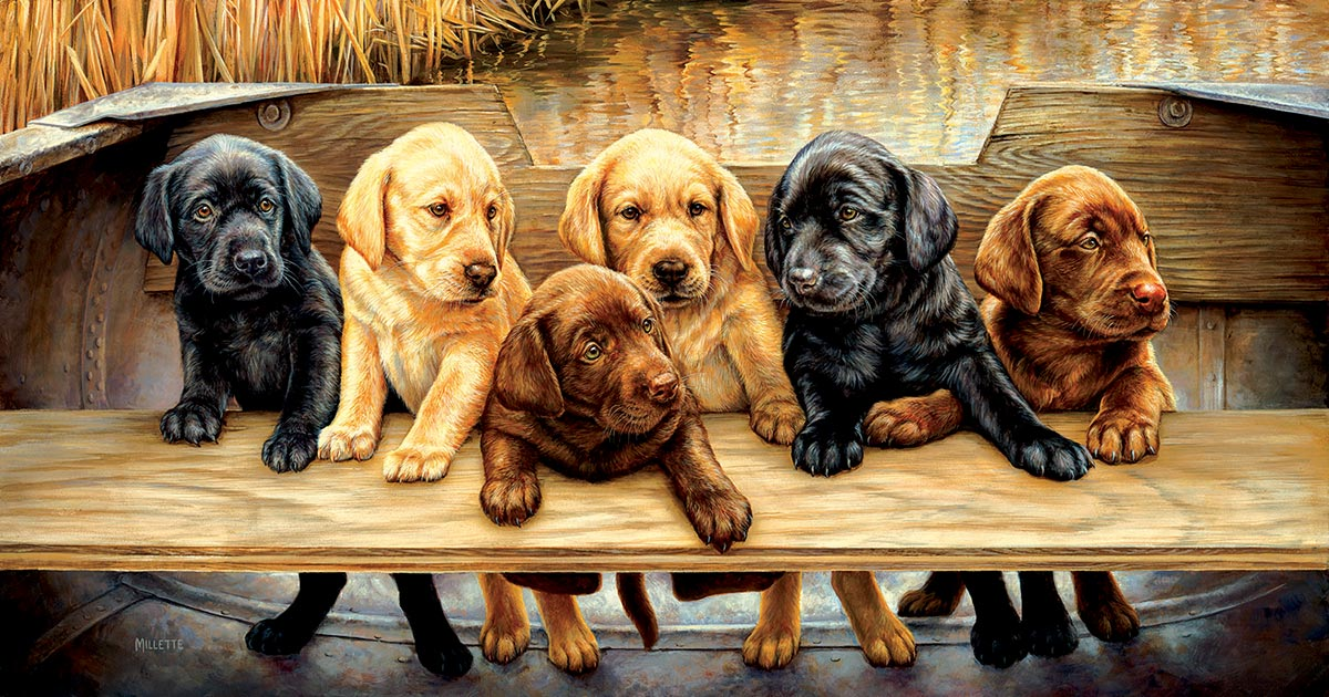 All Hands on Deck Dogs Jigsaw Puzzle