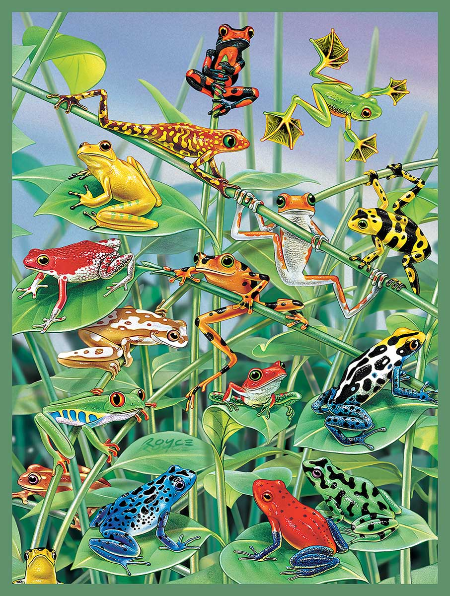 Jungle Gym Frog Jigsaw Puzzle