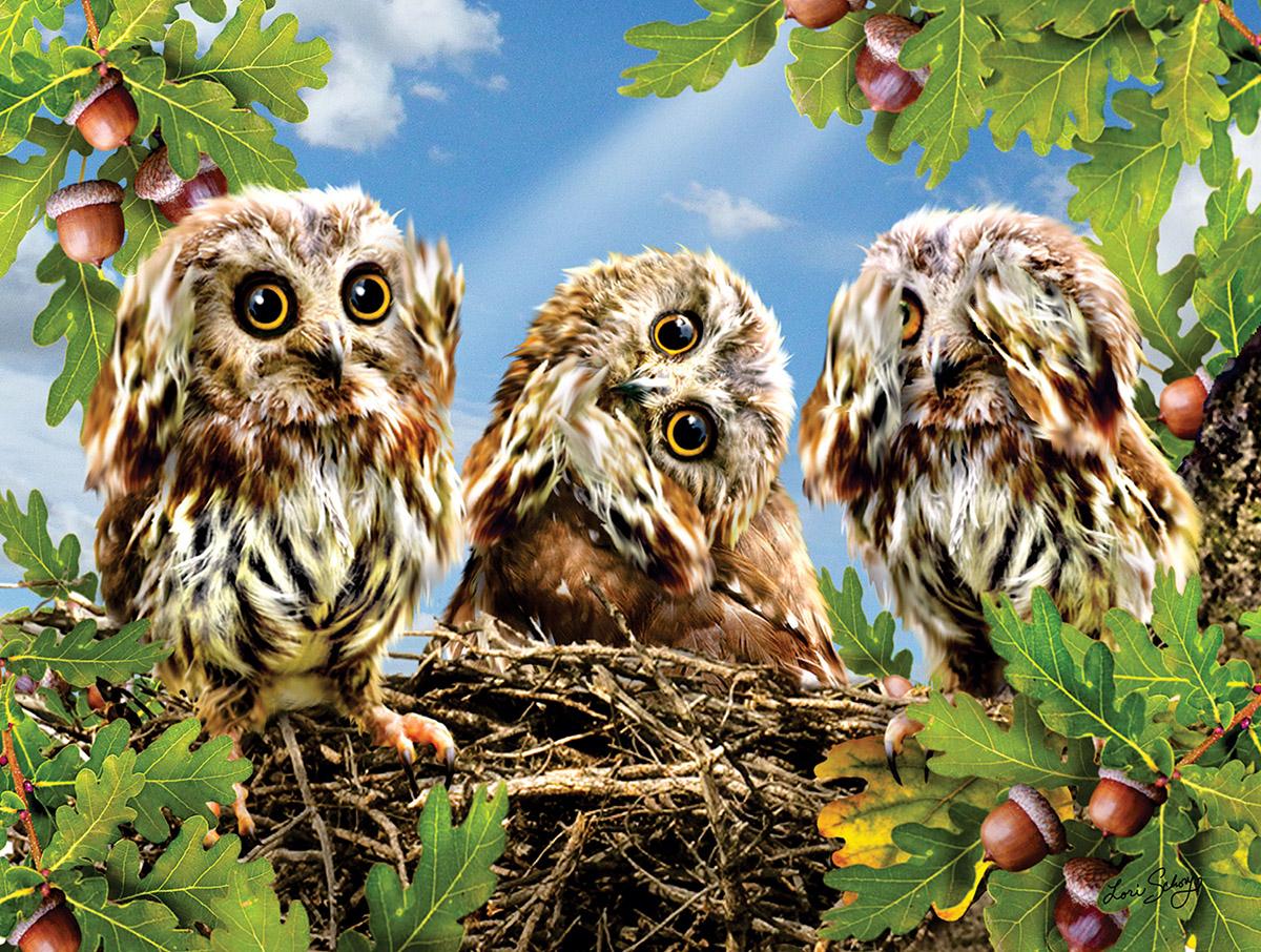 Hear No Speak No See No Birds Jigsaw Puzzle