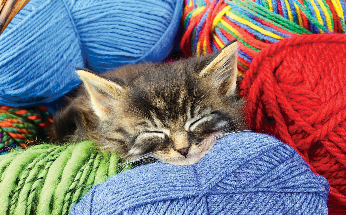 A Sound Sleep - Scratch and Dent Crafts & Textile Arts Jigsaw Puzzle