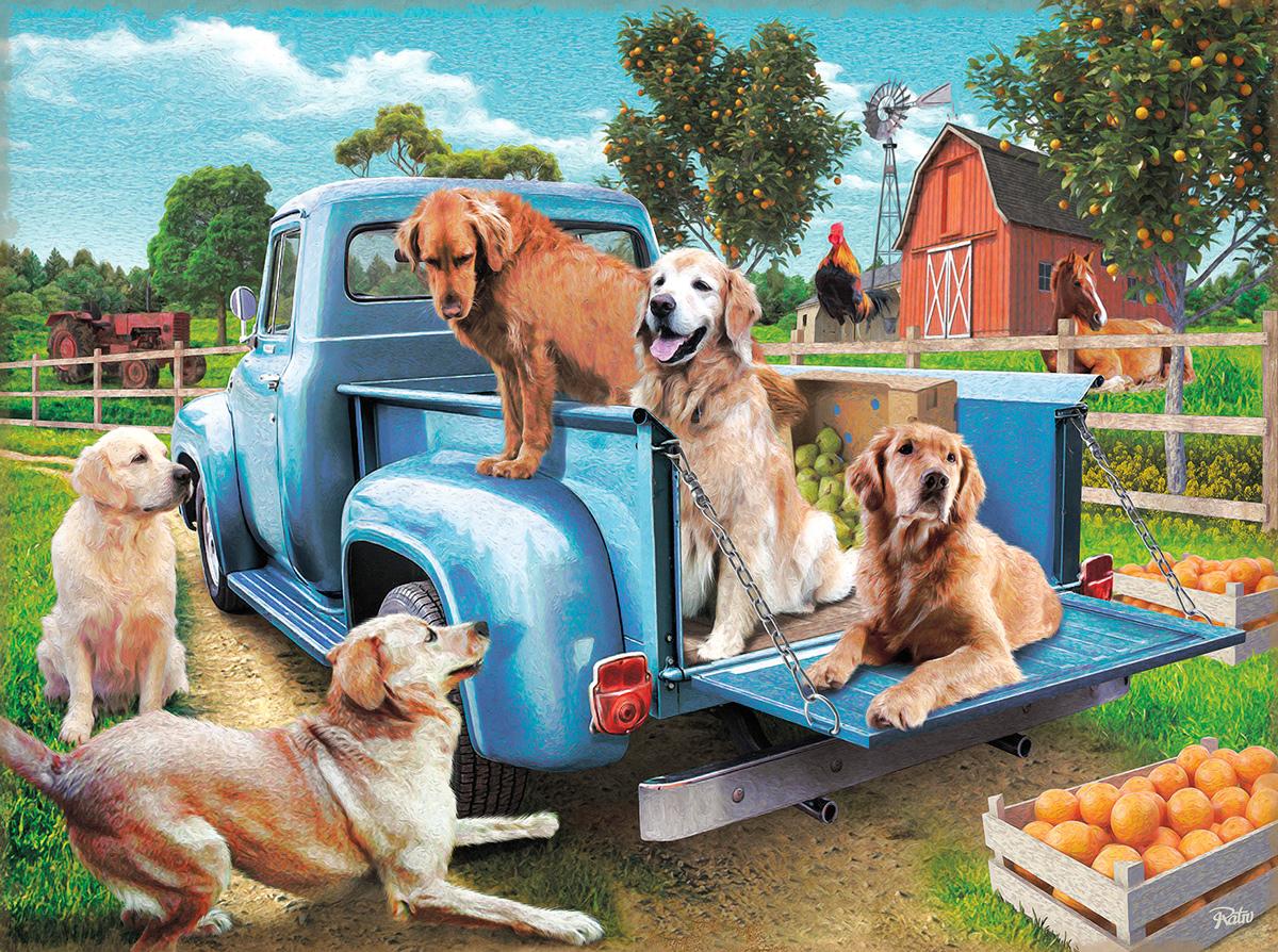 Golden Summer Dogs Jigsaw Puzzle