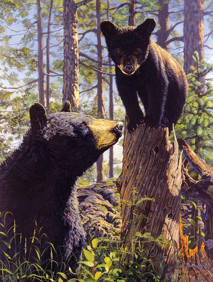 Stump Jumper Bears Jigsaw Puzzle