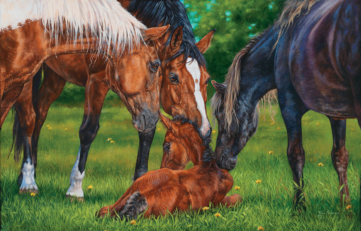A Welcome New Arrival - Scratch and Dent Horses Jigsaw Puzzle