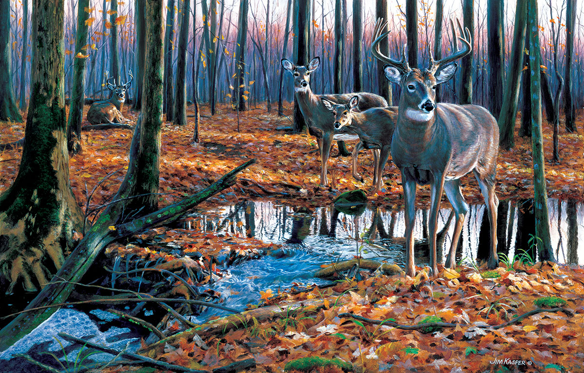 After the Rain - Scratch and Dent Wildlife Jigsaw Puzzle