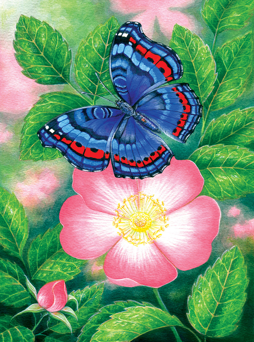 Blue Butterfly Butterflies and Insects Jigsaw Puzzle