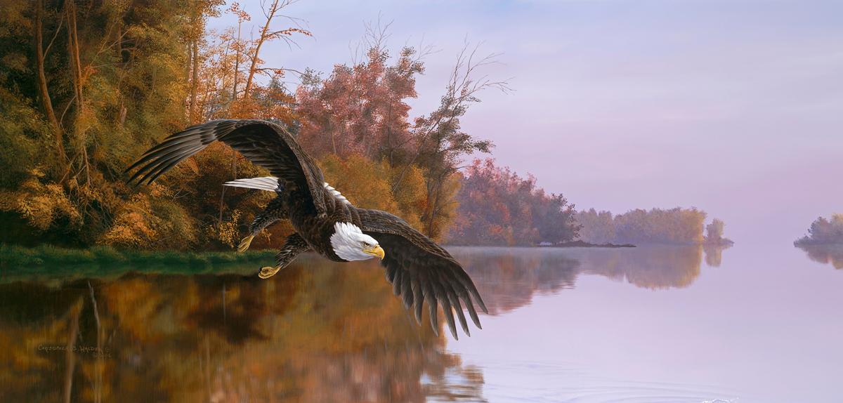 Lake Patron Eagles Jigsaw Puzzle