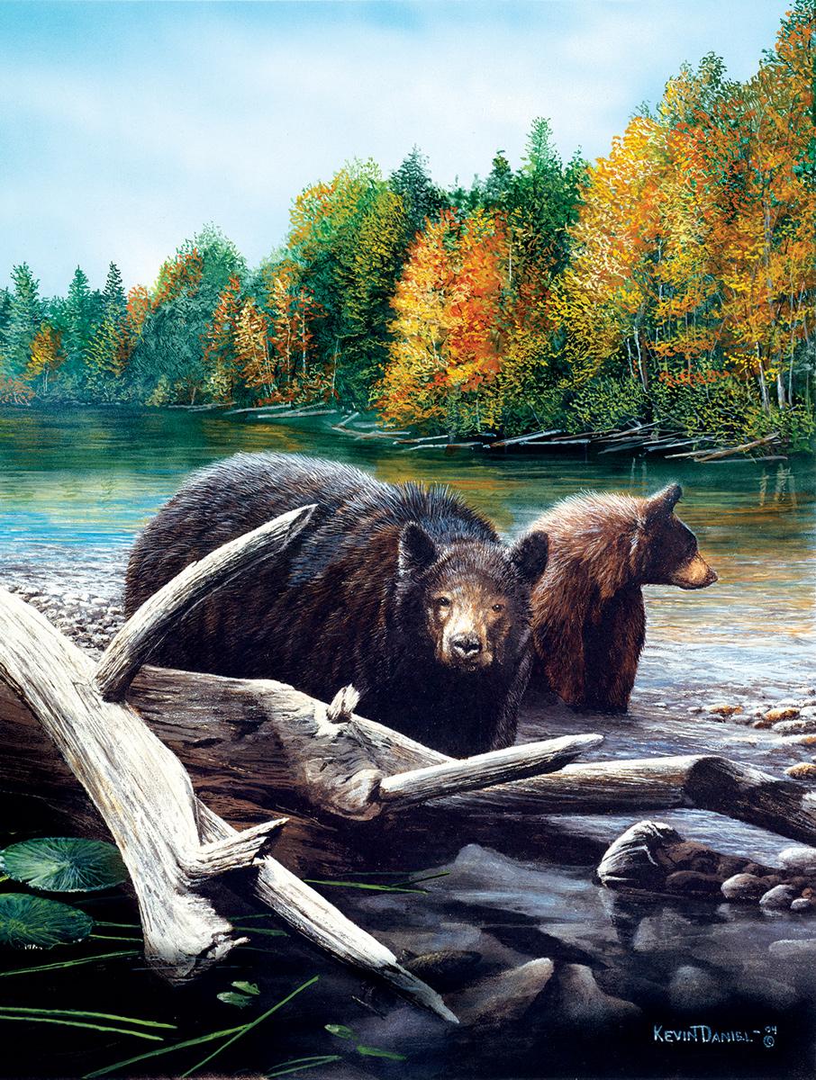 Morning Venture Bears Jigsaw Puzzle