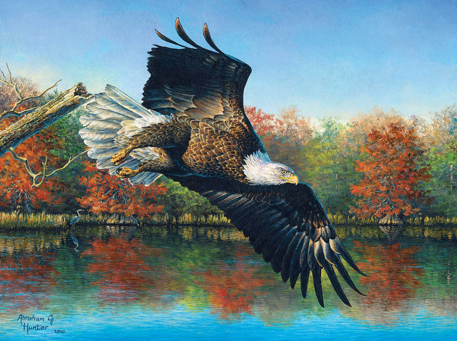 Wetlands Eagle Birds Jigsaw Puzzle