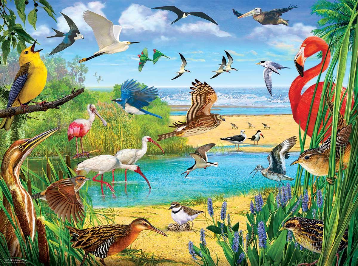 Florida Birds Beach Jigsaw Puzzle