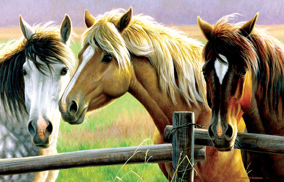 Horse Fence Horses Jigsaw Puzzle