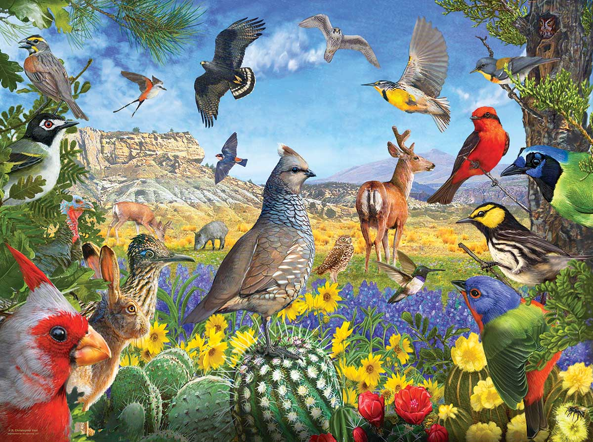Texas Birds Birds Jigsaw Puzzle