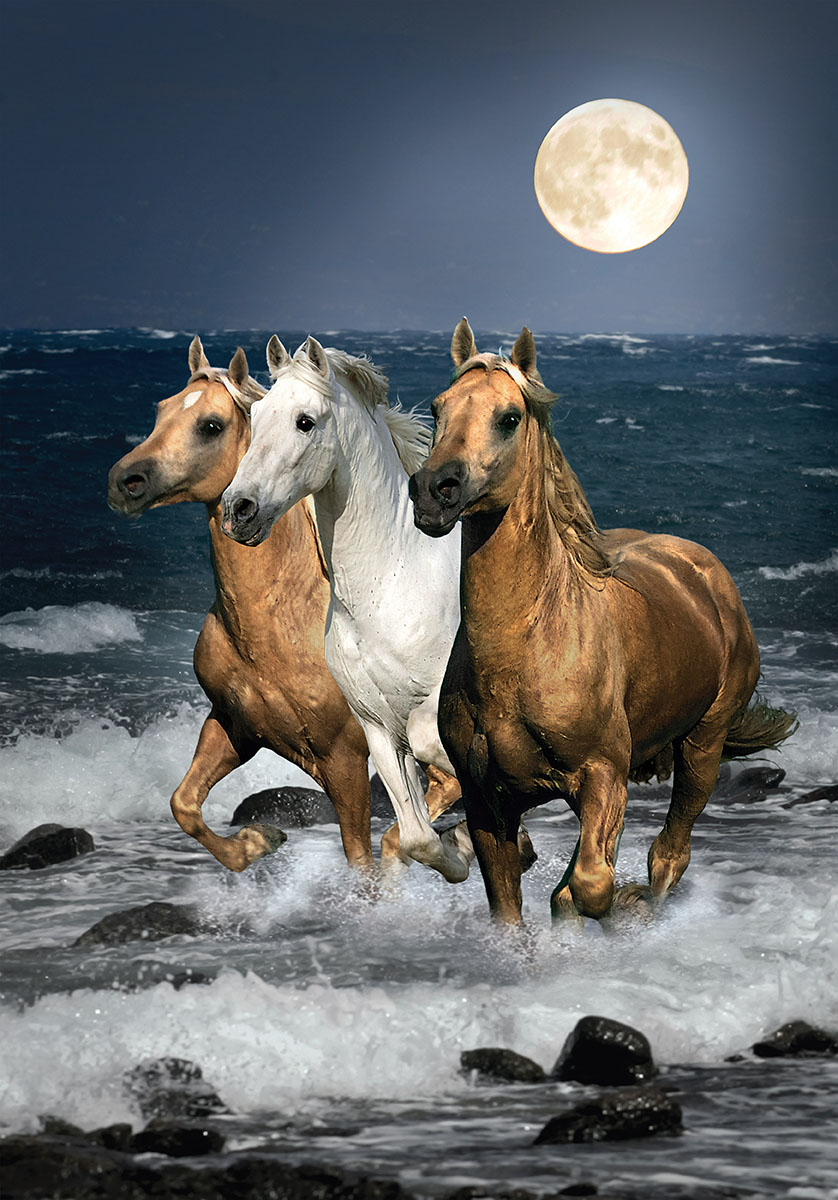Running Horses Jigsaw Puzzle | PuzzleWarehouse.com - photo#45