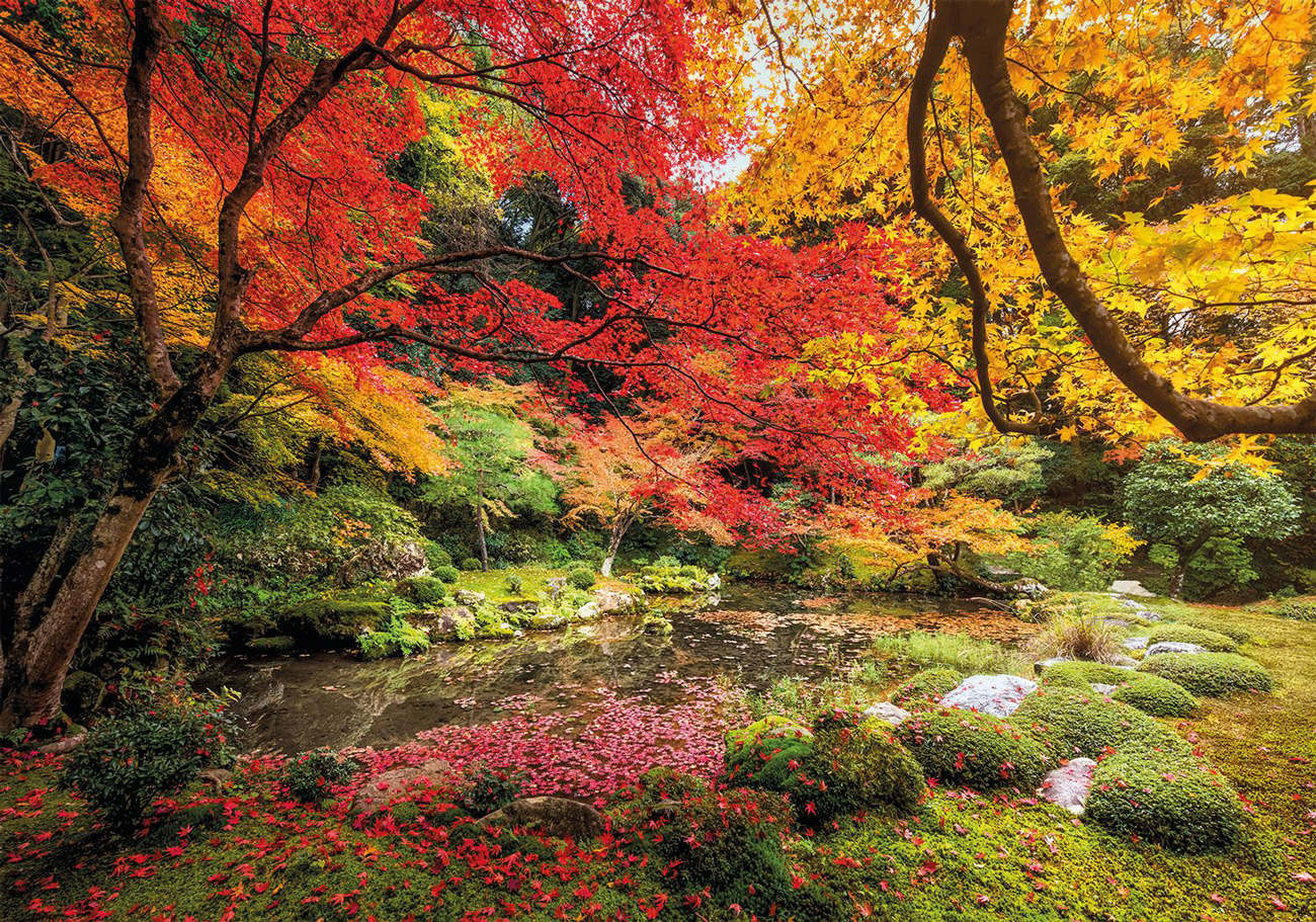 Autumn Park Fall Jigsaw Puzzle