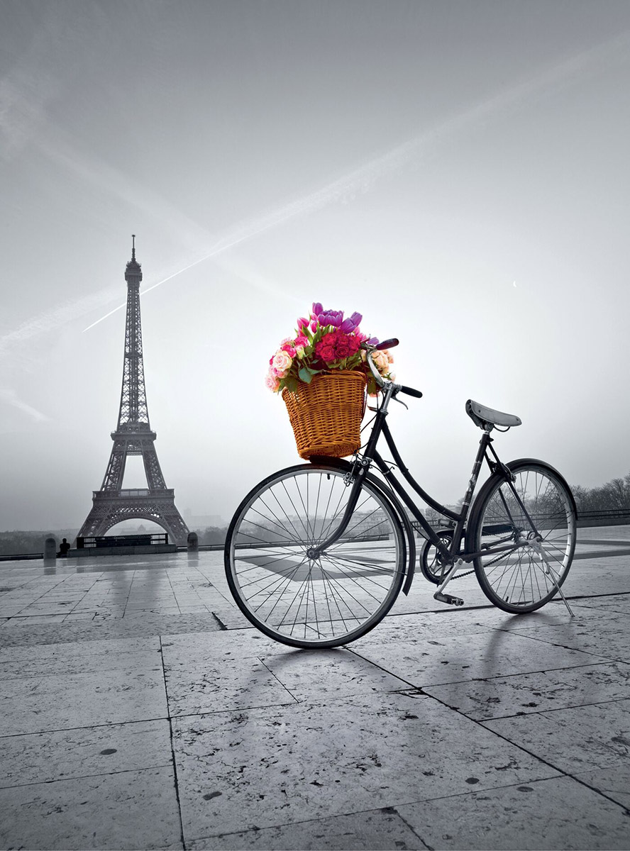 Romantic Promenade In Paris Jigsaw Puzzle