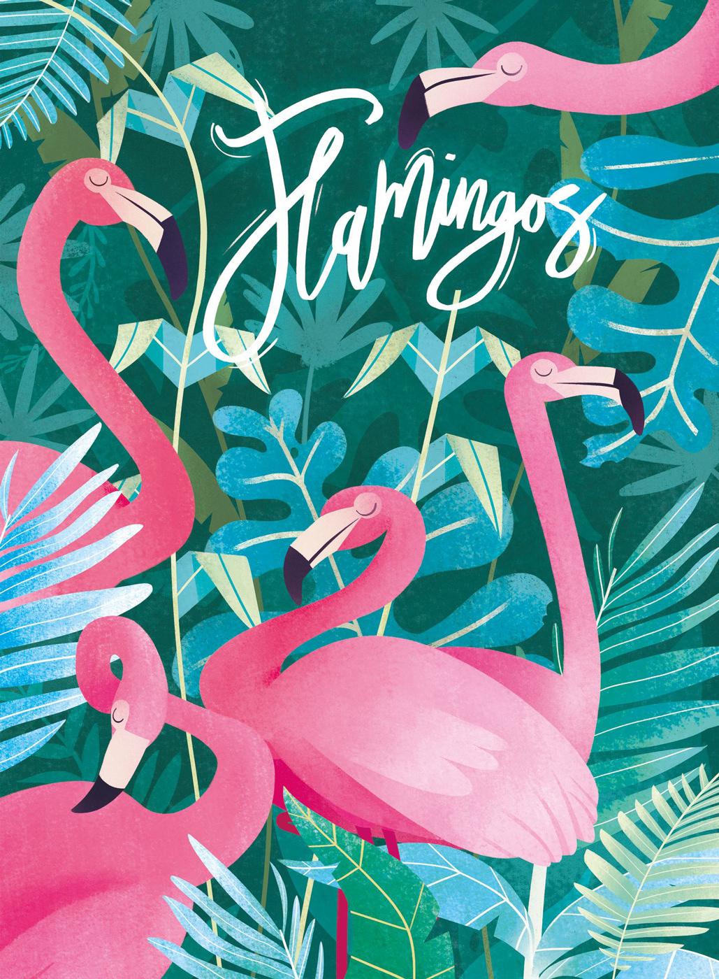 Flamingos Birds Jigsaw Puzzle