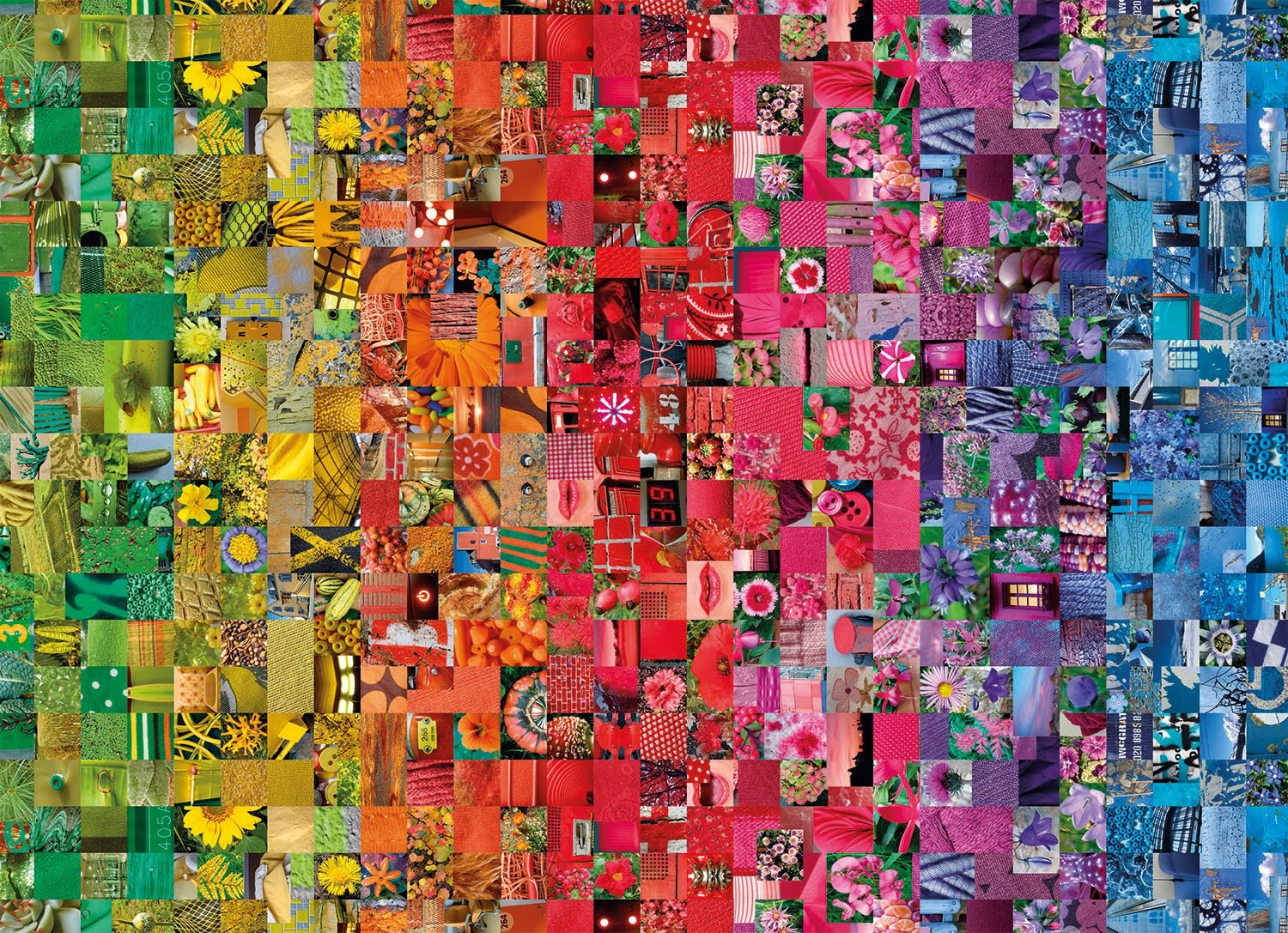 Collage Collage Jigsaw Puzzle