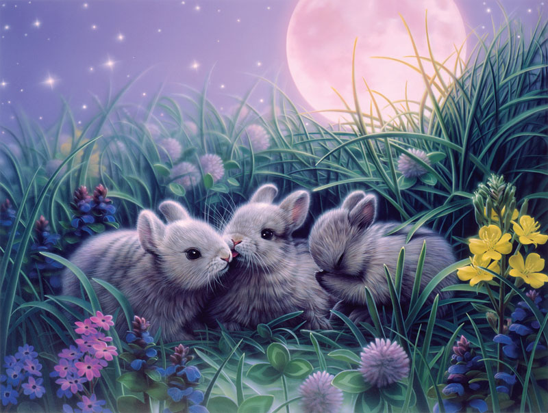 Moon Babies Other Animals Jigsaw Puzzle