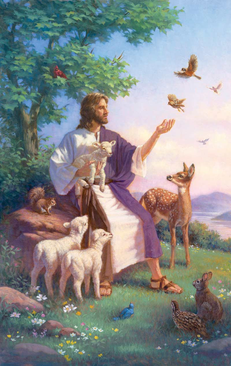 Come Unto Me - Scratch and Dent Animals Jigsaw Puzzle