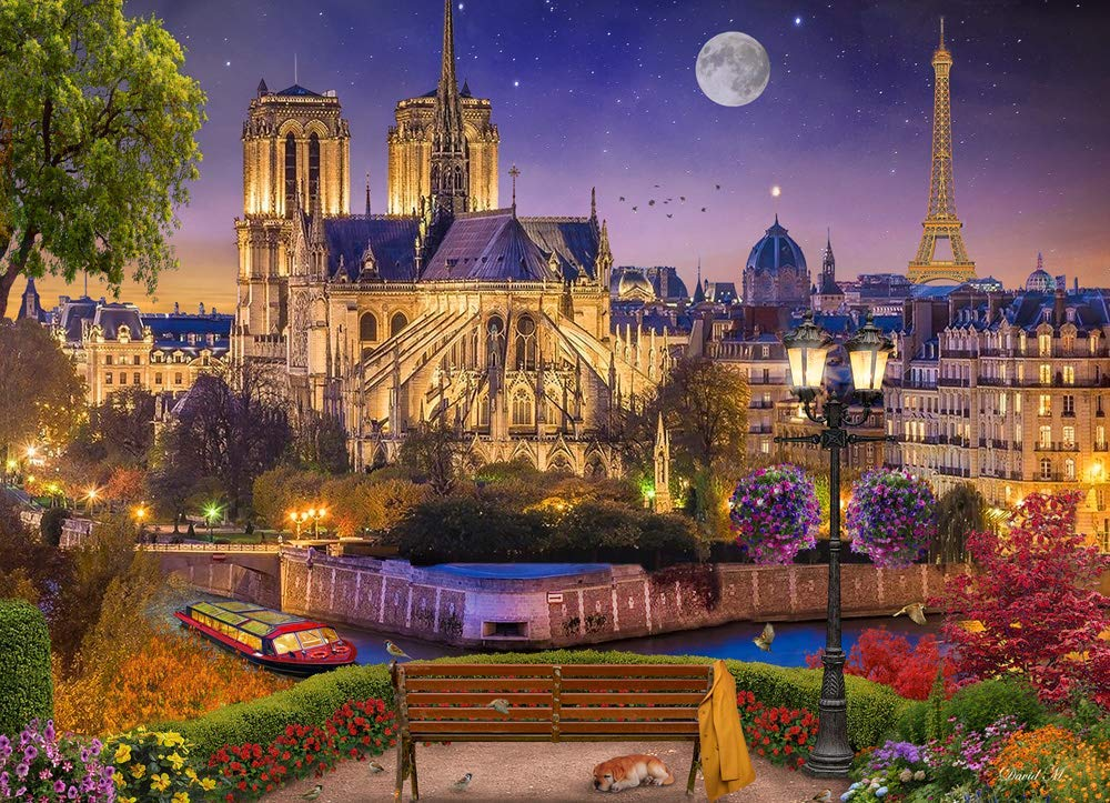 Notre Dame Night France Jigsaw Puzzle
