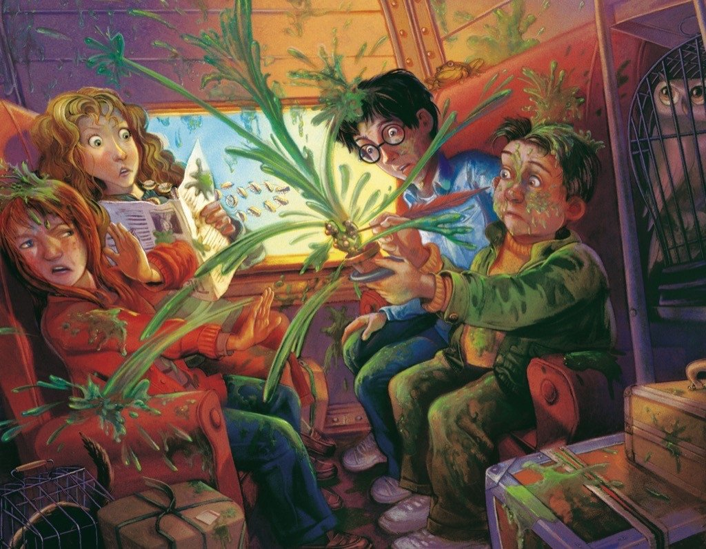 Mimbulus Mimbletonia  (Mini) Harry Potter Jigsaw Puzzle