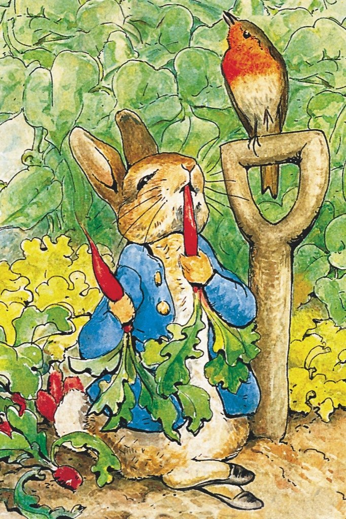 Peter Rabbit  (Mini) Movies / Books / TV Jigsaw Puzzle