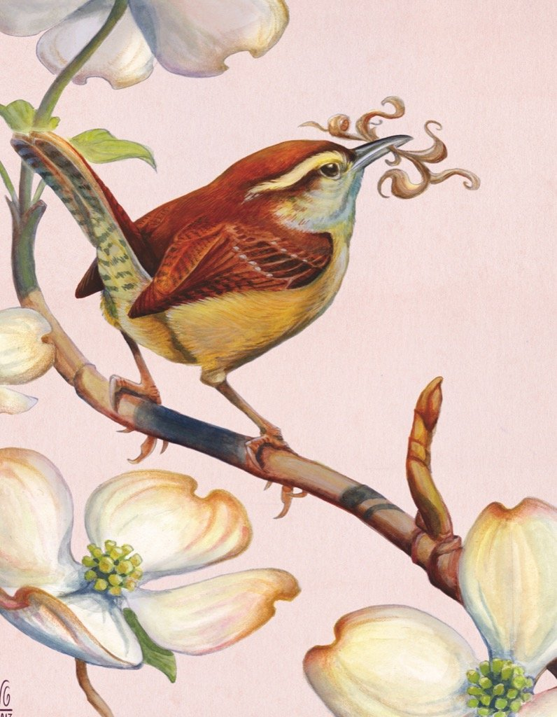 Carolina Wren Mini Birds Jigsaw Puzzle