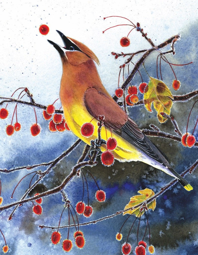 Cedar Waxwing Mini Birds Jigsaw Puzzle
