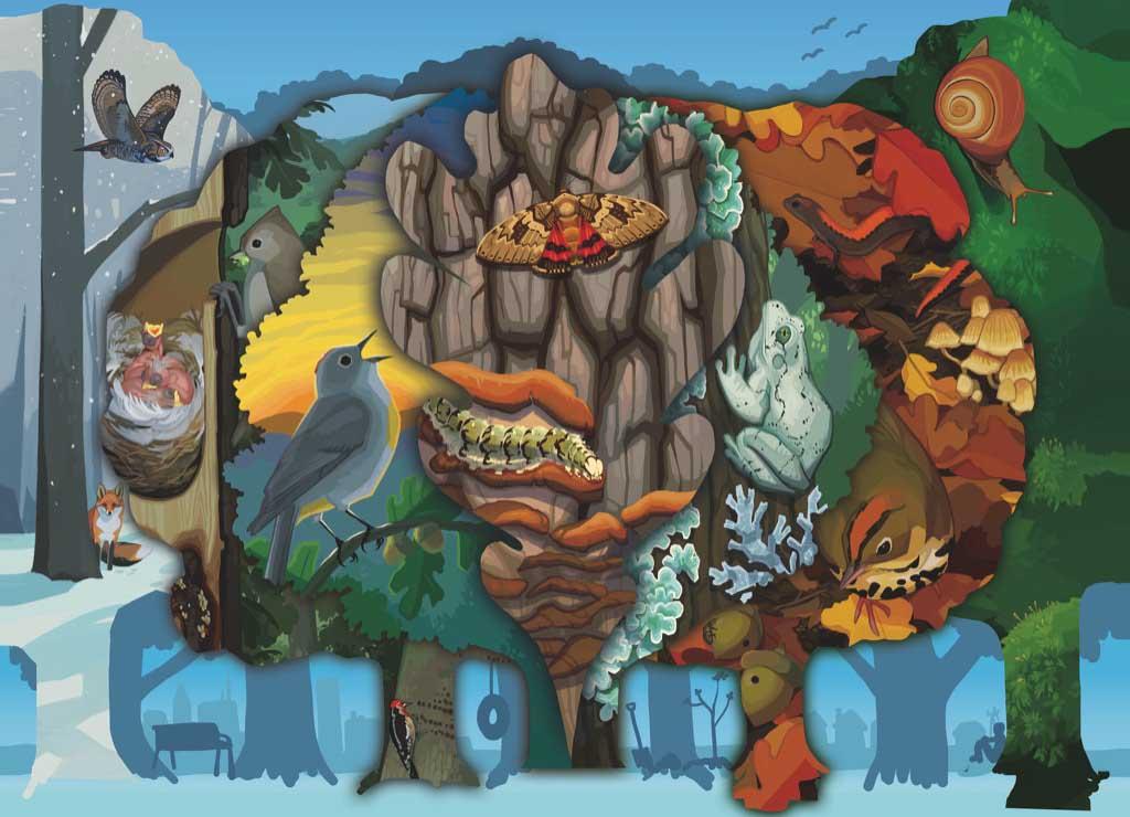 Life in an Oak Birds Jigsaw Puzzle