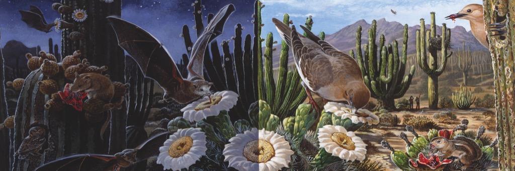 Desert Ecosystem Animals Jigsaw Puzzle