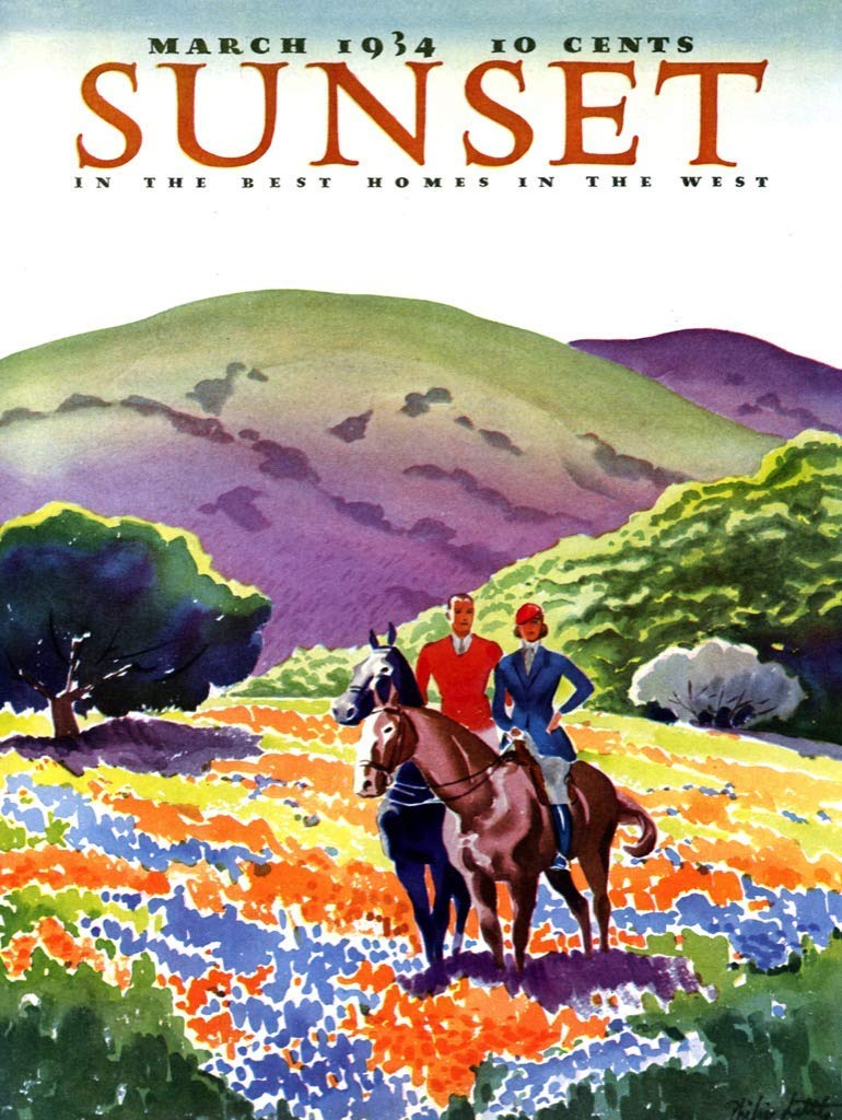 Horses in the Hills - Scratch and Dent Horses Jigsaw Puzzle