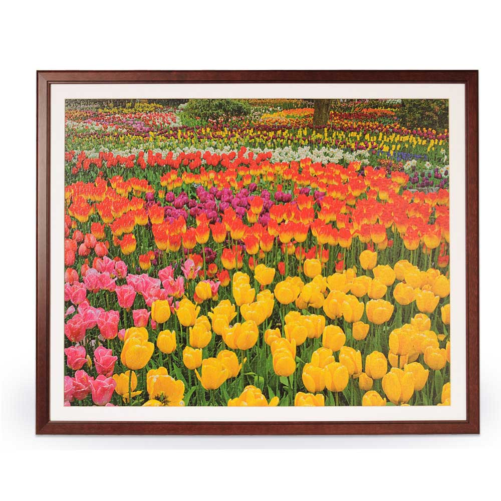 springbok 1500 piece jigsaw puzzle frame. Black Bedroom Furniture Sets. Home Design Ideas