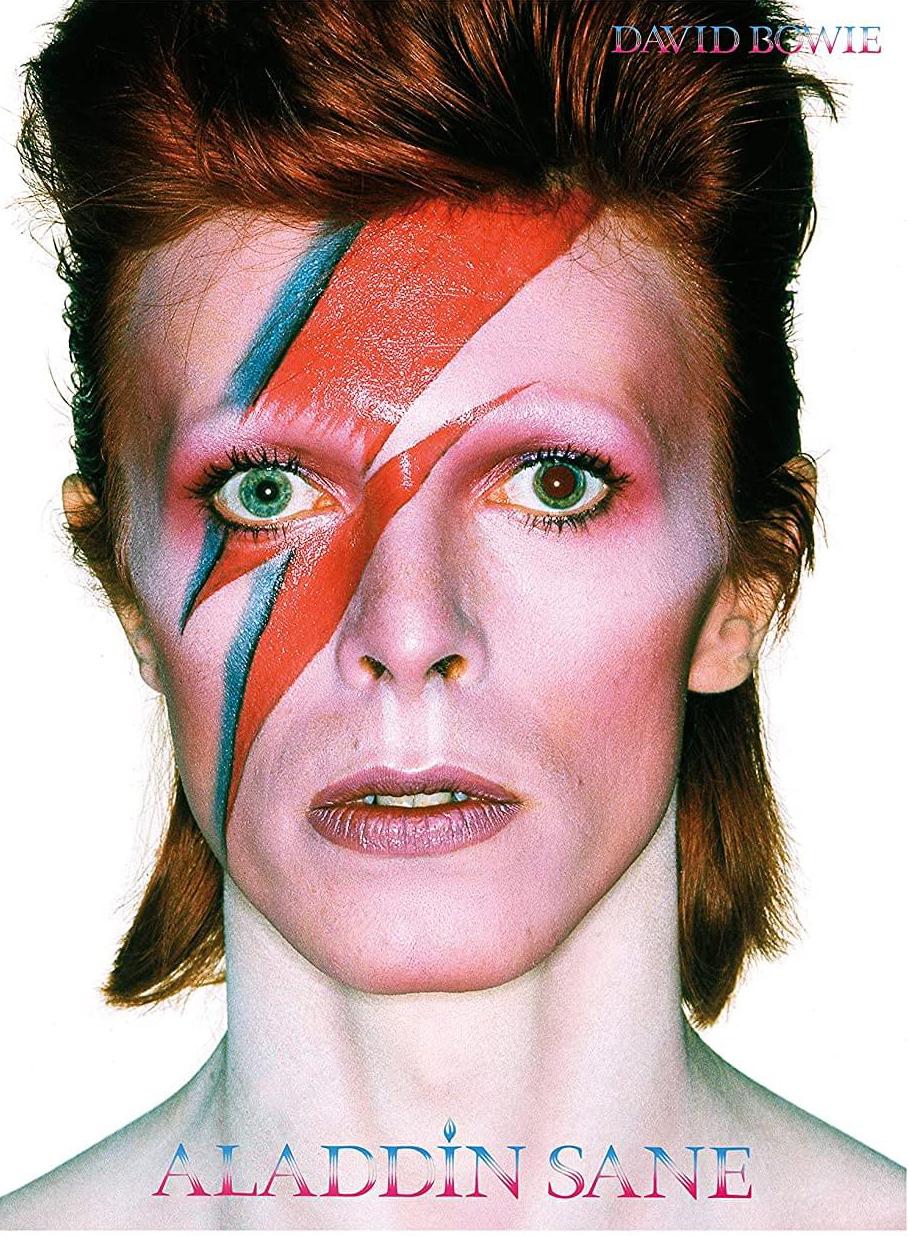David Bowie Aladdin Sane Music Jigsaw Puzzle