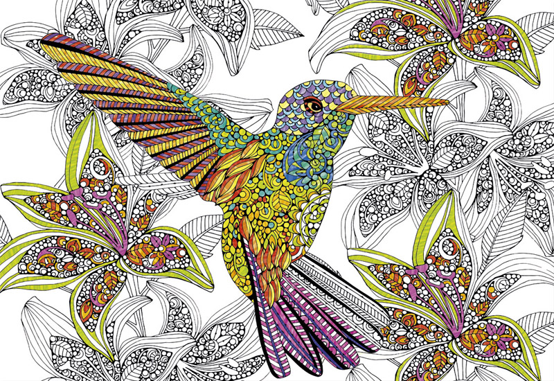 Hummingbird Birds Jigsaw Puzzle