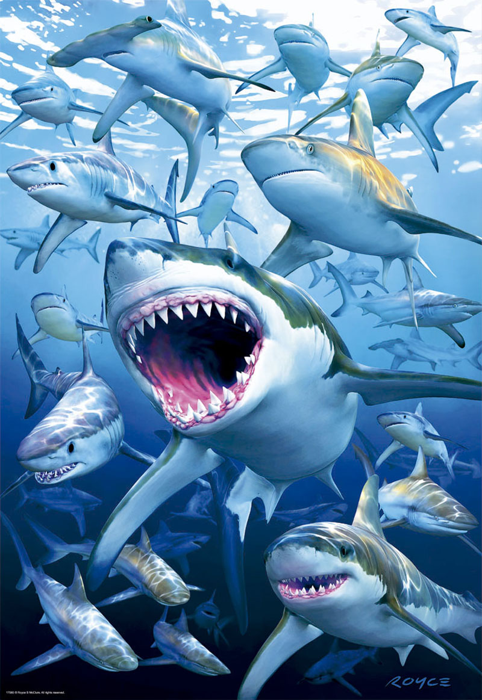 Shark Club Under The Sea Jigsaw Puzzle