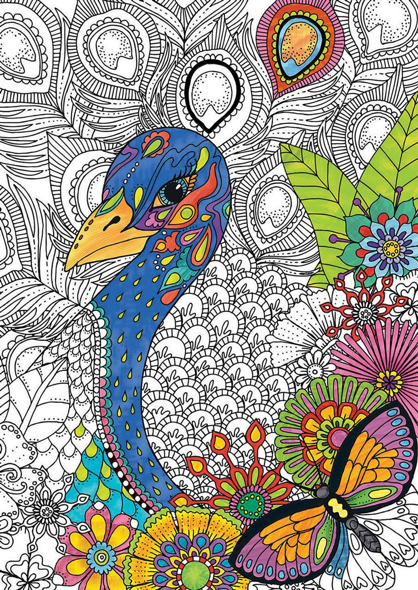 Jungle Safari (300 Coloring) Birds Jigsaw Puzzle