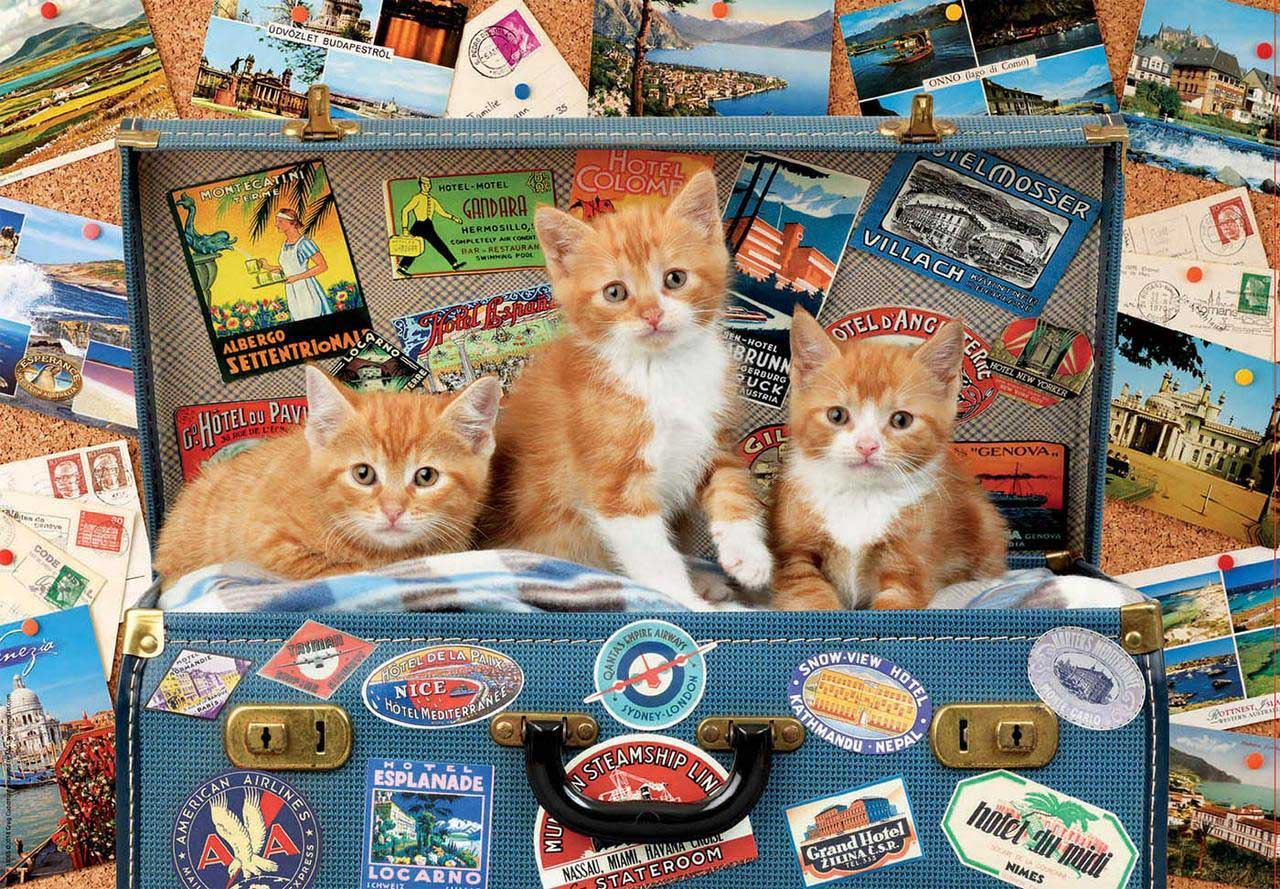 Travelling Kittens Travel Jigsaw Puzzle