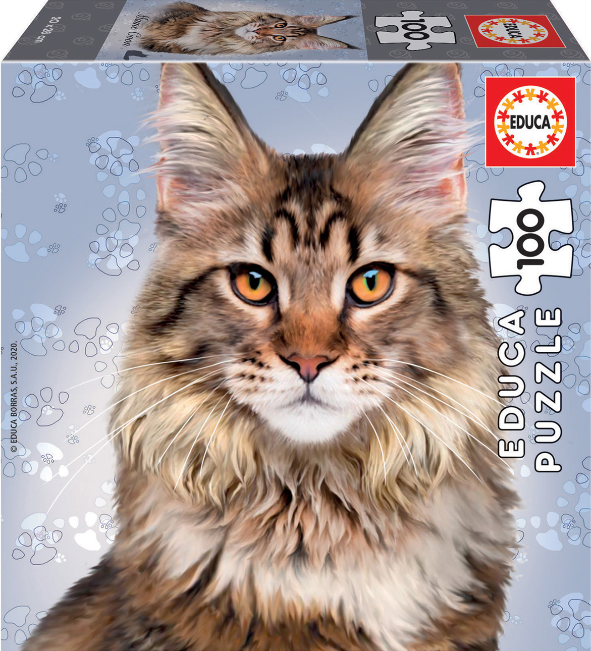 Main Coon Cats Jigsaw Puzzle