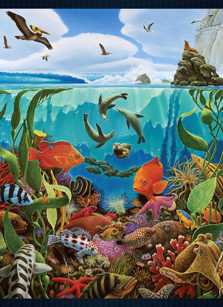 California Roll Under The Sea Jigsaw Puzzle