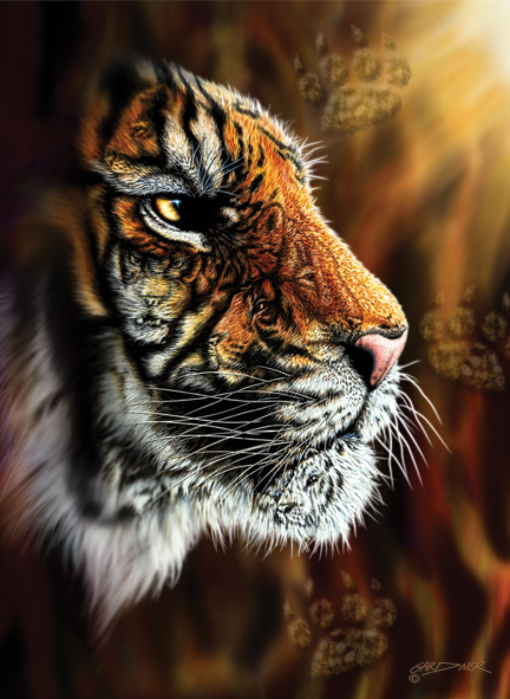 Wild Tiger Tigers Jigsaw Puzzle