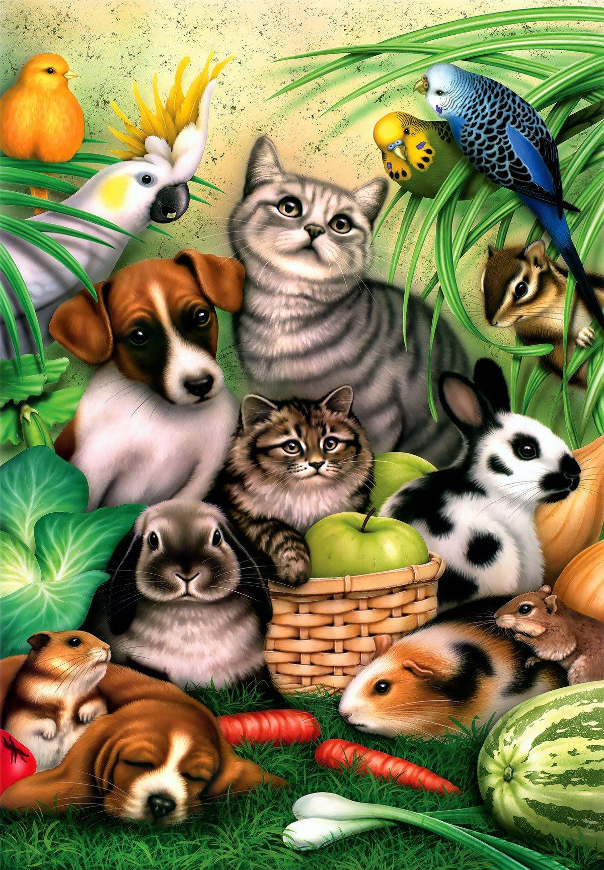 Magic Pets Animals Jigsaw Puzzle