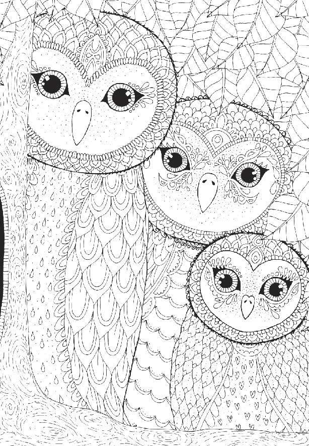 Coloring Owls Family Birds Jigsaw Puzzle