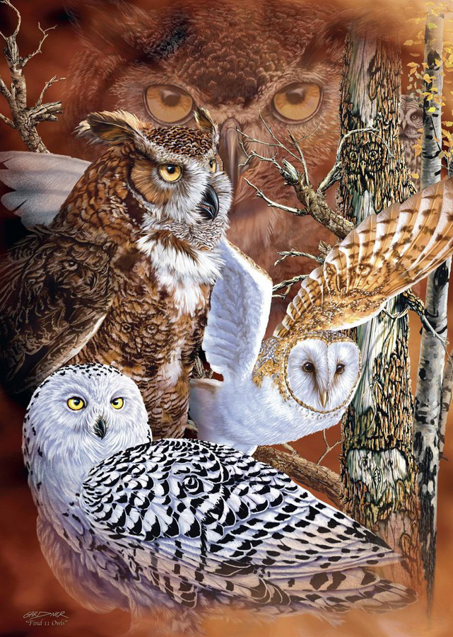 Find The Owls Jigsaw Puzzle Puzzlewarehouse Com