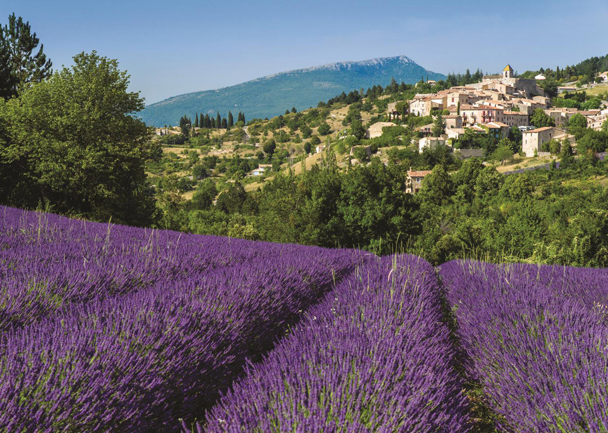 Provence, Aurel Countryside Jigsaw Puzzle
