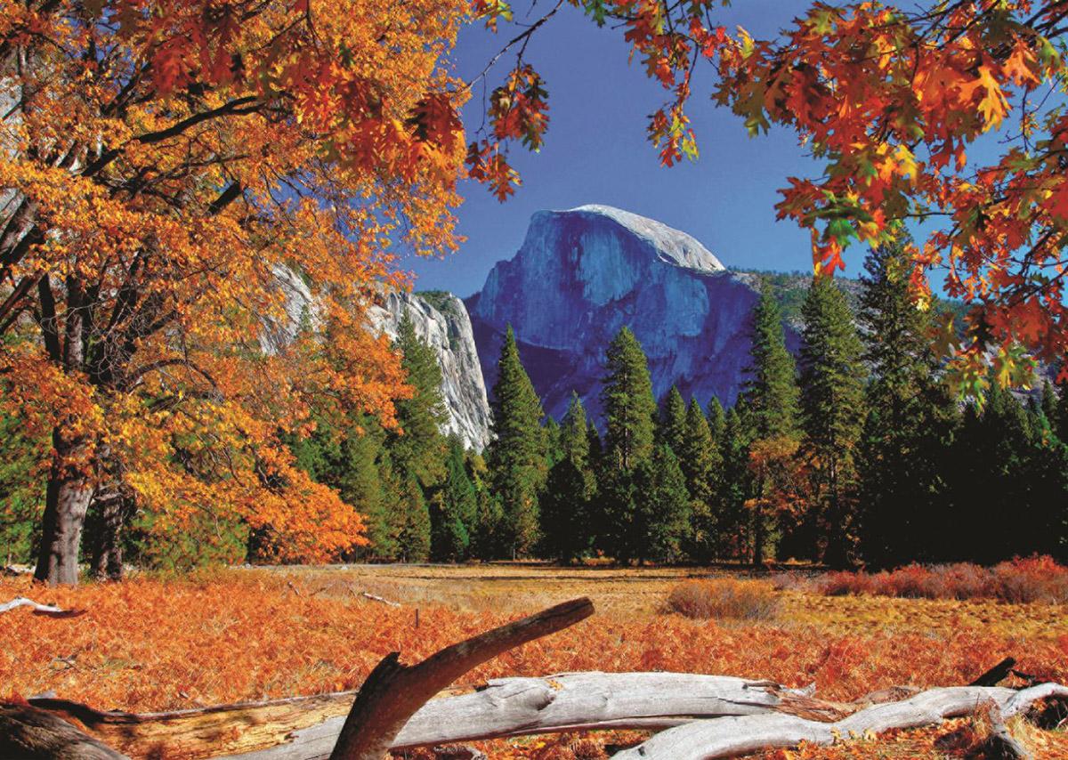 Yosemite National Park USA Fall Jigsaw Puzzle